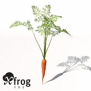 carrot plant 3d model
