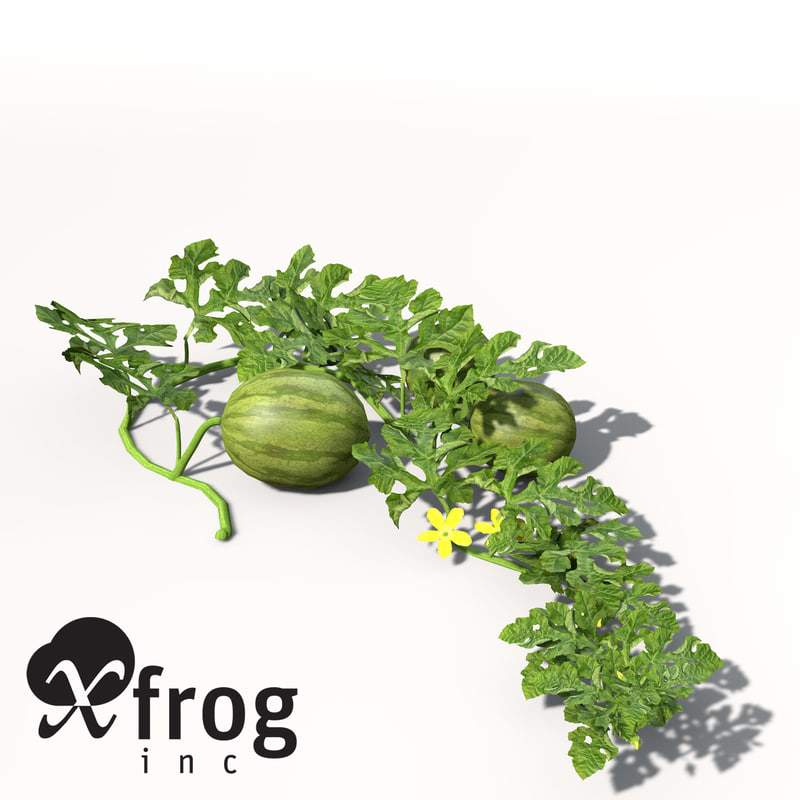 3d xfrogplants waterme...