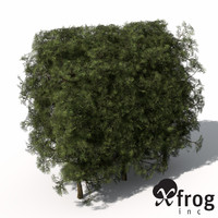 3d max xfrogplants false cypress hedges