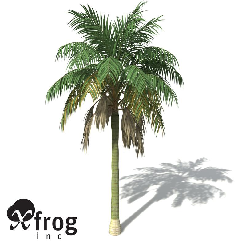 3ds xfrogplants kentia palm