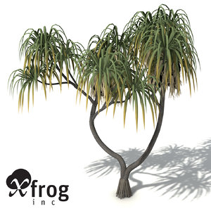 c4d xfrogplants coastal screw pine