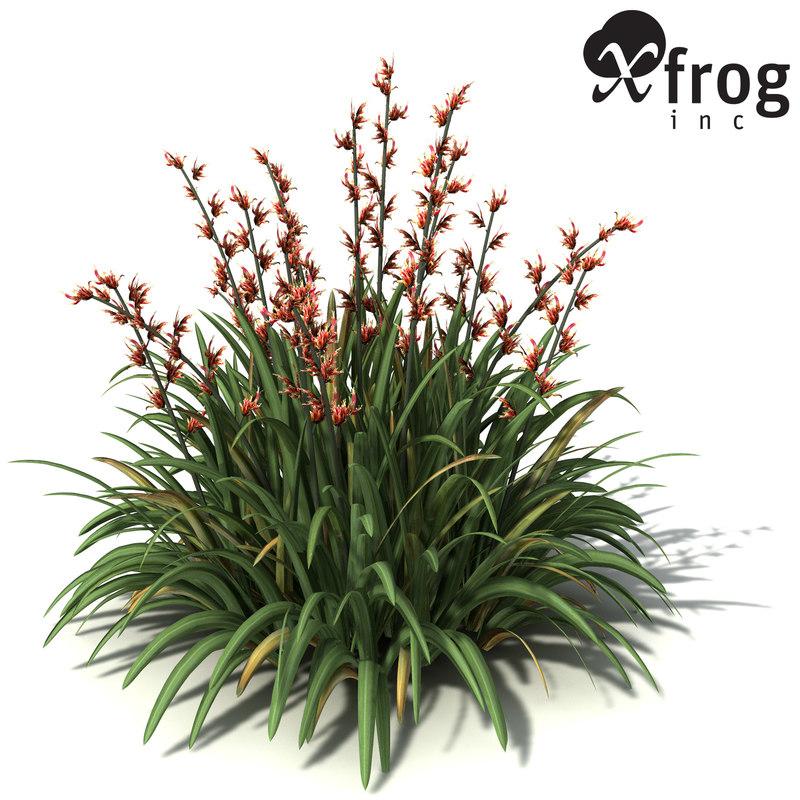 3ds max xfrogplants new zealand flax