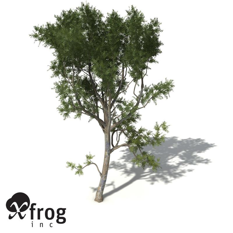 roughbarked apple tree bark 3d model