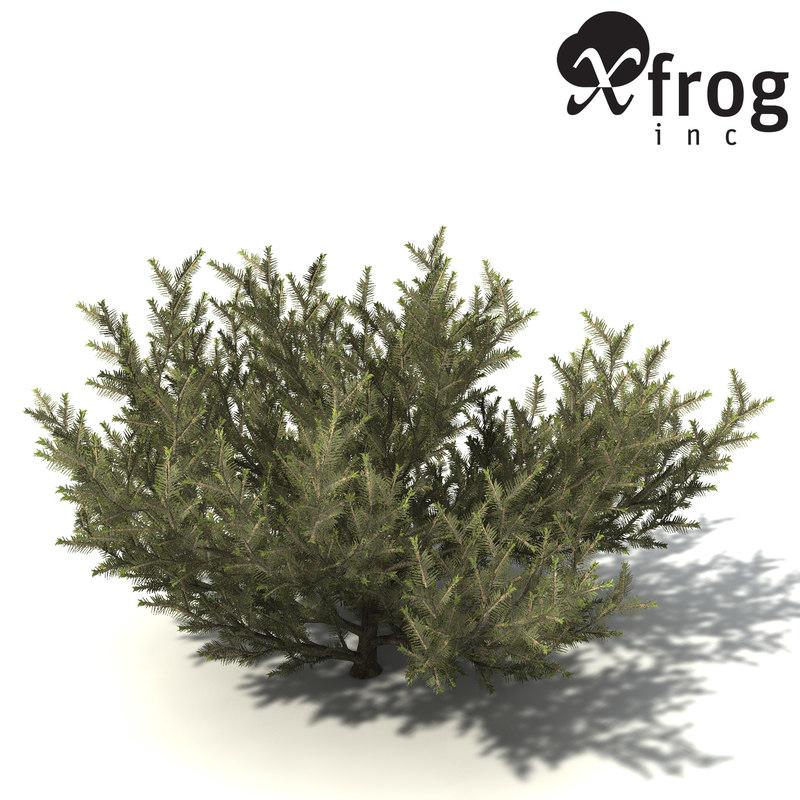common net bush 3d model