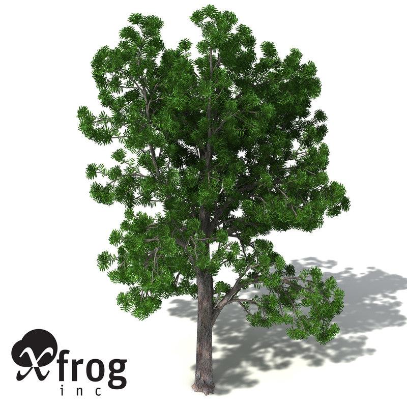 3ds max xfrogplants plum pine