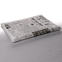 newspaper folds 3d model