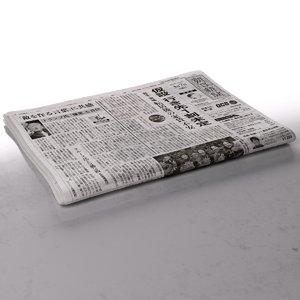 newspaper folds 3d model