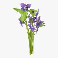 3d violet bouquet - model