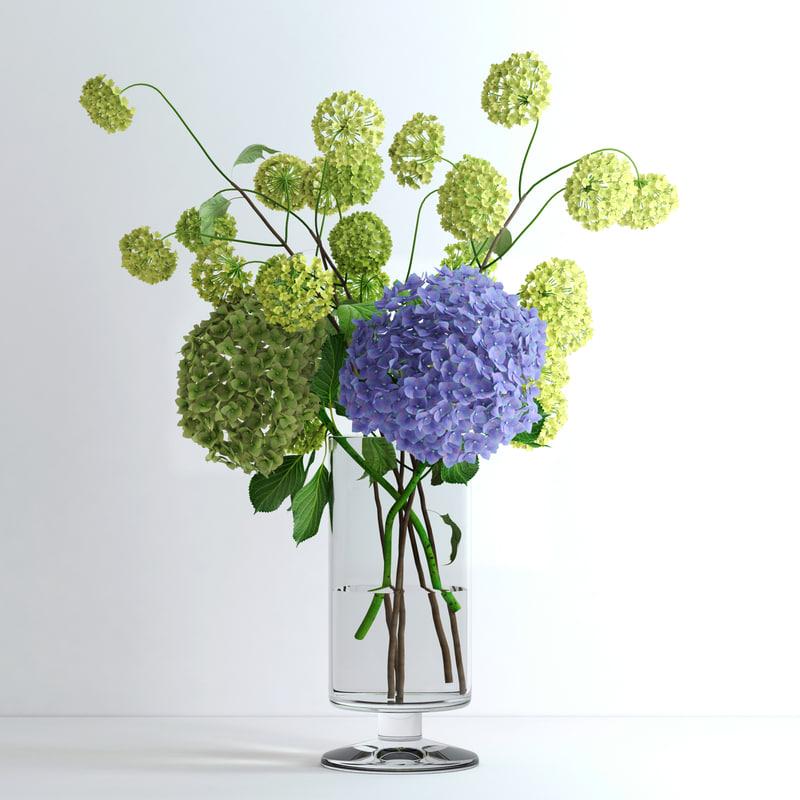 realistic viburnum hydrangea flowers ma