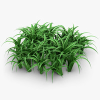 3d model of realistic grass leaves pose