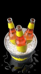 bottles bucket ice max