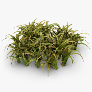 3d realistic grass leaves pose