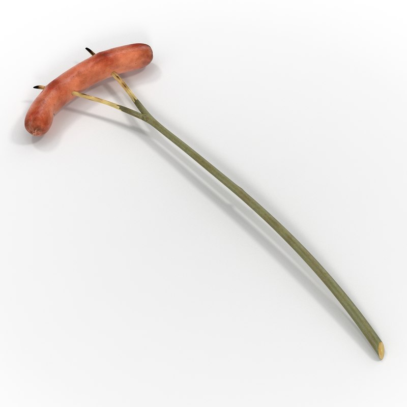 grilled sausage wooden stick 3d model