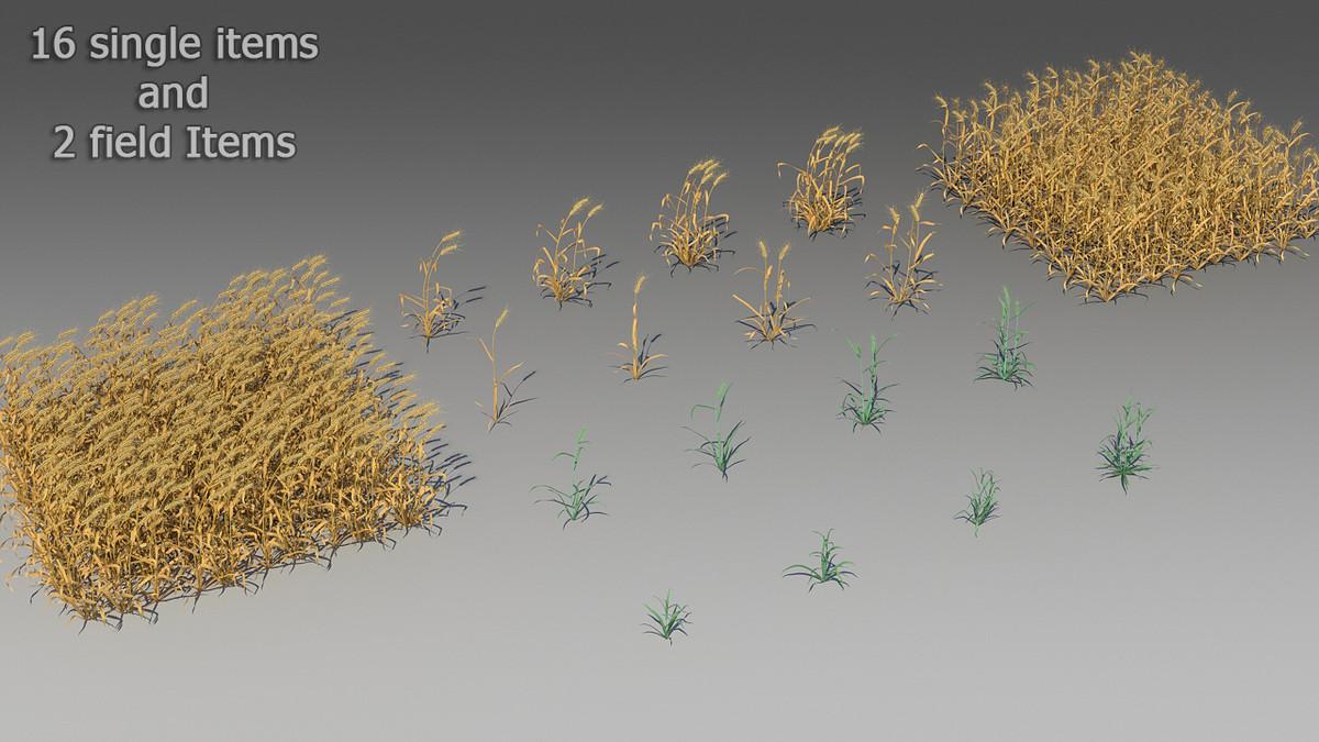 3d 18 wheat
