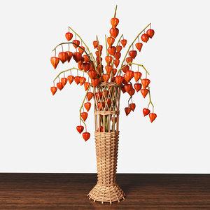 3d modeled vase physalis