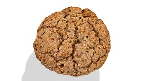 oatmeal cookies 3d model