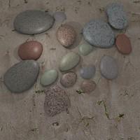 3ds max beach pebbles