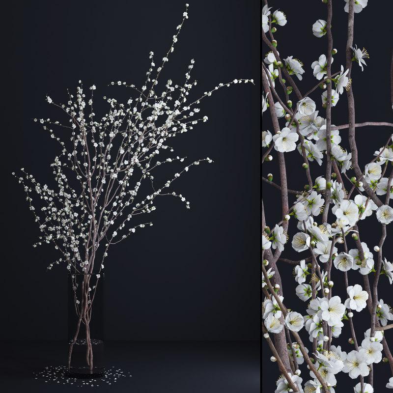 vase white blossom flowers max