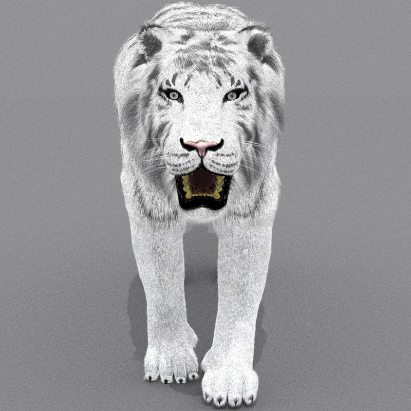 zbrush white tiger cat fur max
