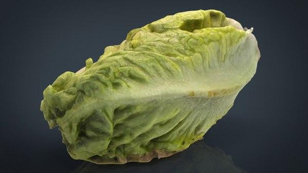 lettuce obj