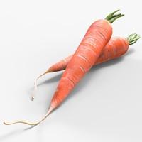 realistic carrot 3d max