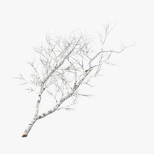 fallen logs birch 01 3d model