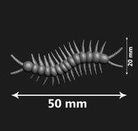 centipedes print 3d model