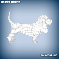 Basset hound base mesh