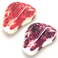3d model realistic raw dry aged