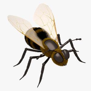 3d honey bee open model
