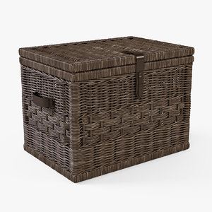 3d x wicker storage trunk brown
