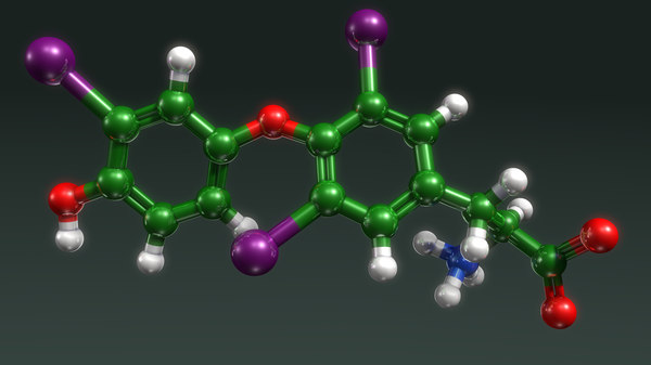 thyroid hormone physiological 3d obj