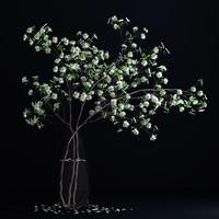 realistic dogwood white blossom max