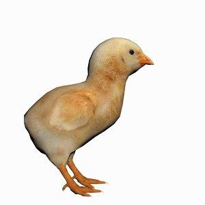 chick baby chicken 3d model