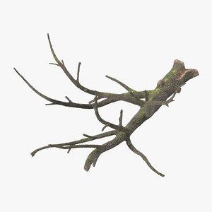 3d model fallen logs oak 01