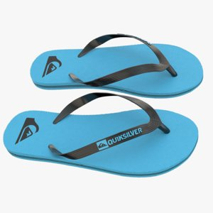 3d quiksilver molokai flip flops