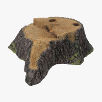 Tree Stump 01