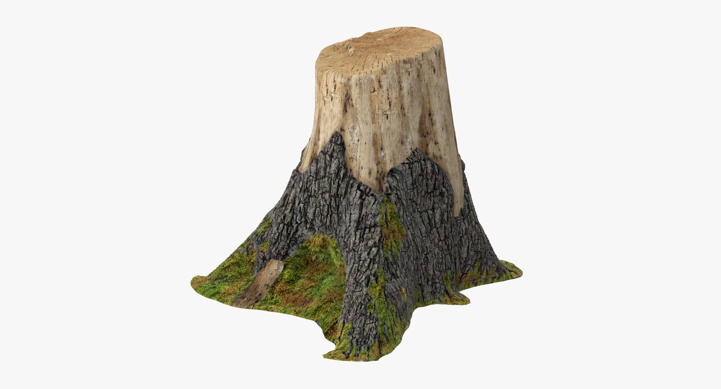 tree stump 02 3d obj