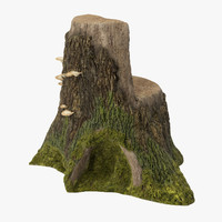 tree stump 04 c4d