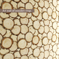 Art wall of wooden rings