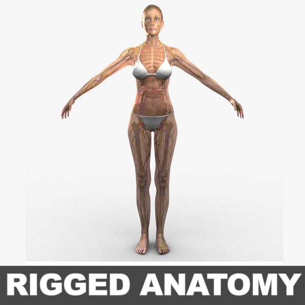 3d ma ultimate complete rigged female