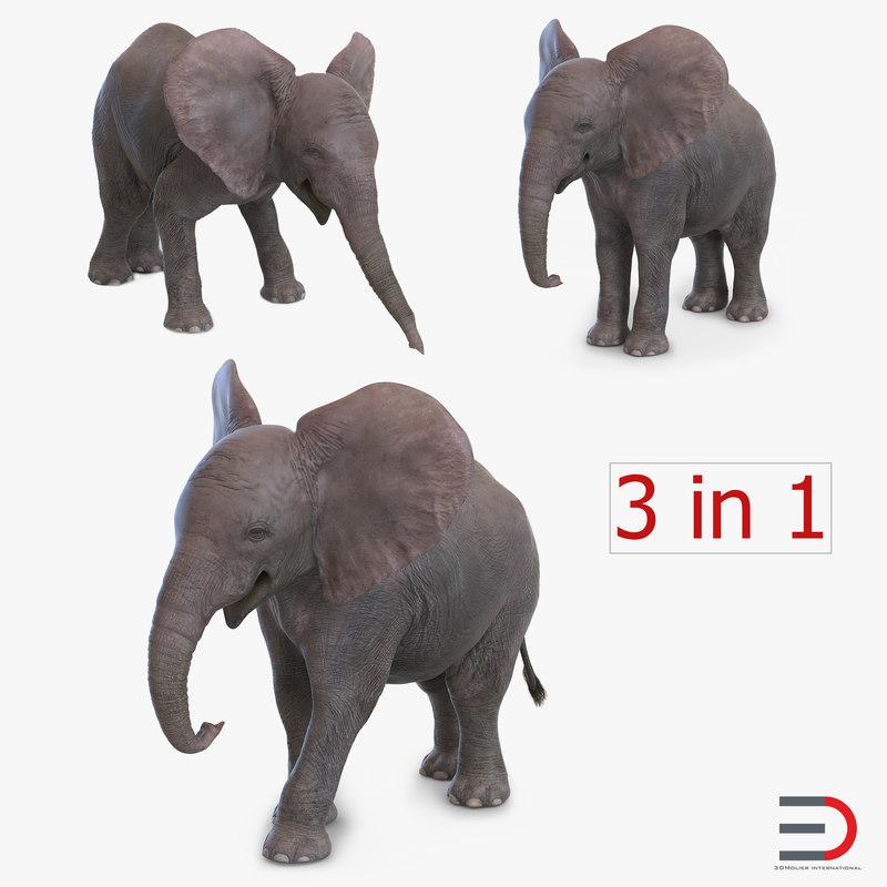 baby elephants 3ds
