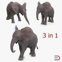 baby elephants 3ds