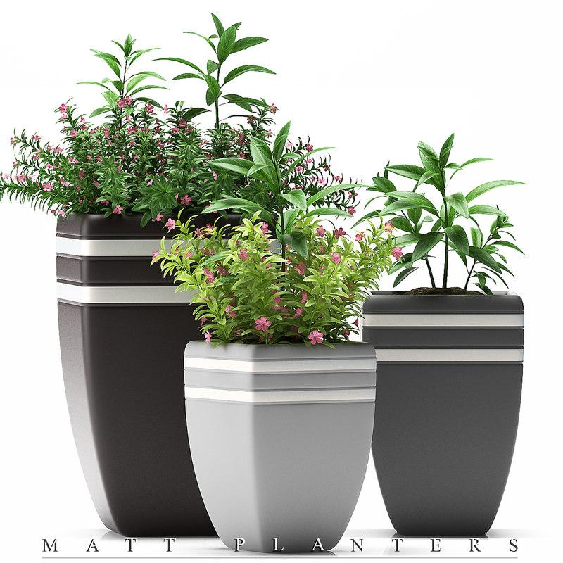 3d model of flowers pots