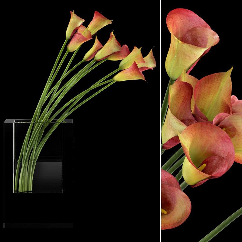 3d vase red callas flowers plants