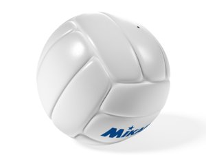 leather volleyball ma
