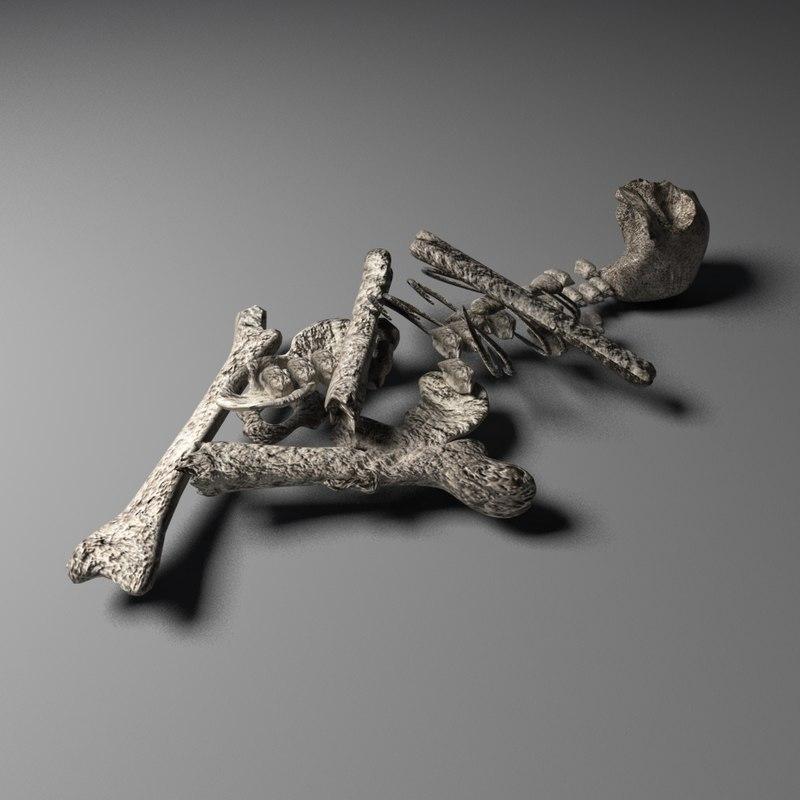 old skeleton 3d obj