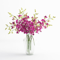 Orchid dentrobium flower glass vase 01