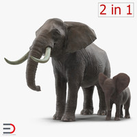 Elephants Collection 2