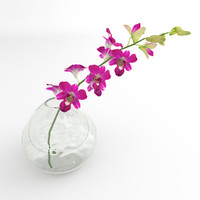 Ochird flower dentrobium glass vase 02